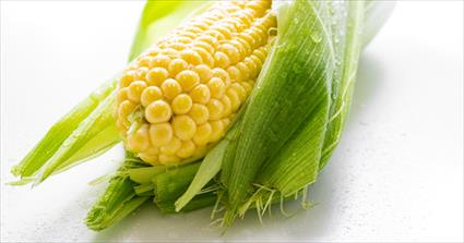 Corn Has Many Forms
